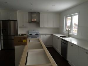 Kitchen Renovation Long View